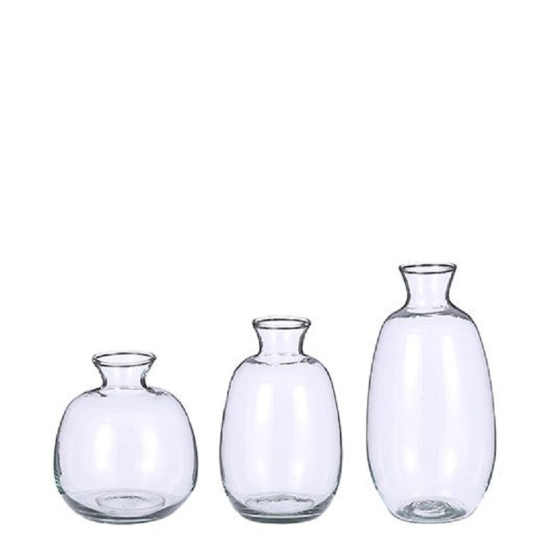 3x Fles vazen Gina transparant glas in set