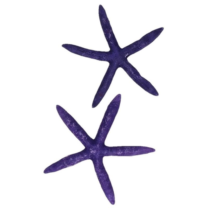 Decoratieve zeesterren paars