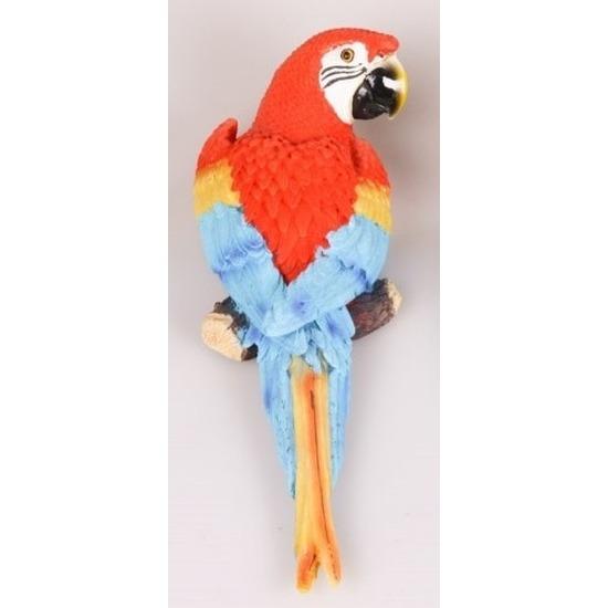Dierenbeeld rode Ara papegaai vogel 30 cm