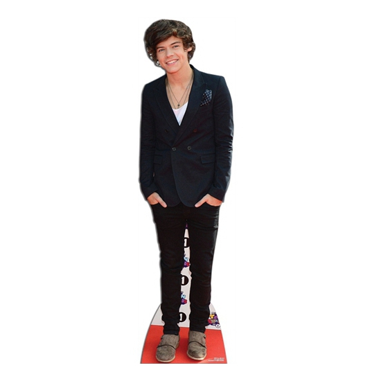 Harry Styles cut-out bord