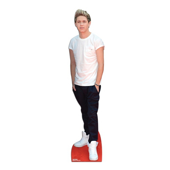 Niall Horan cut-out bord